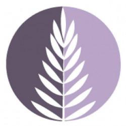 Séance conseils aroma-phytothérapie